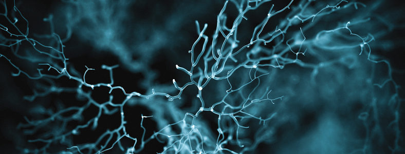 neuron system