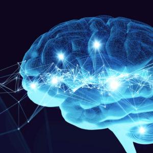 3D brain rendering